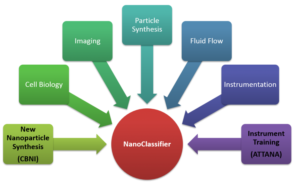 NanoClassifier Project Breakdown